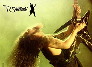Dimebag Darrell Collection