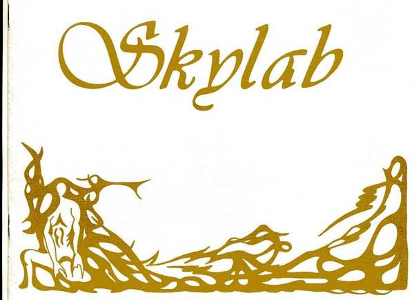 Skylab Flyer